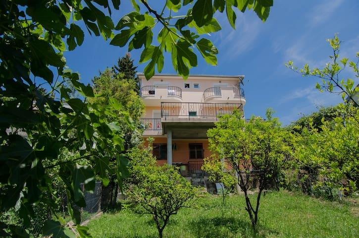 CGApart Pink - Herceg Novi - Lägenhet