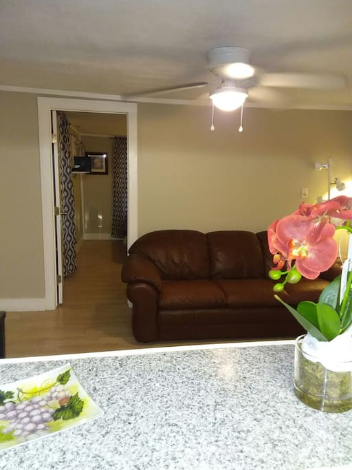 Clean, Comfortable livingroom with plush leather sofa for relaxation or watching TV