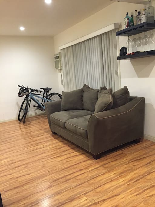 Two very comfy over-stuffed couches - one love seat and one full size. Lots of natural light through large front windows, but no direct sun. In-wall air conditioner keeps entire apartment cool.