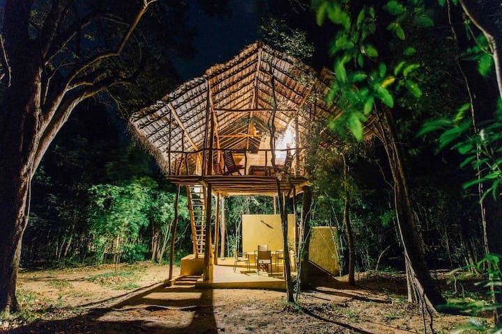 Back of Beyond, Sigiriya Rock - Cozy Tree House