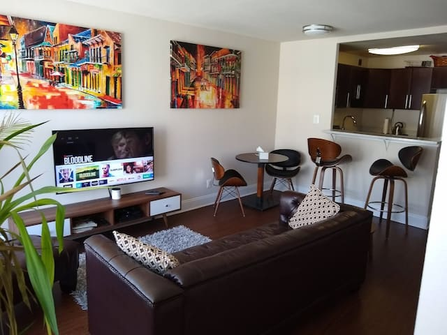 1BR Apt in SW Waterfont DC