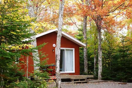 Cozy Camp Cabin #33 (pet friendly)