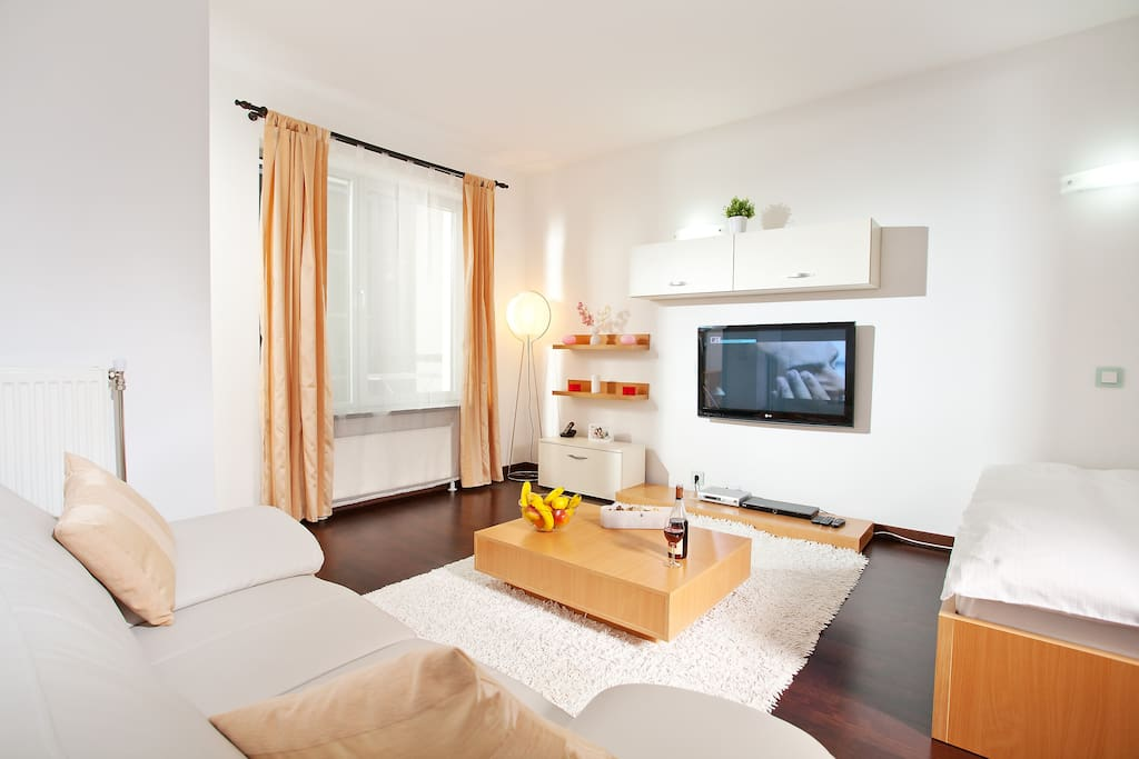 Generous sized riverview studio 6 apartments for rent for Bucharest apartments
