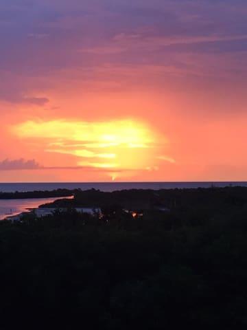 Marco Island Gulf Paradise!