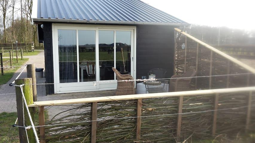 Eigen terras bij het huisje