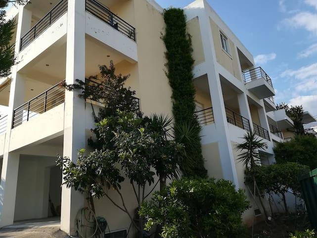 Sunny Apartments - Niki
