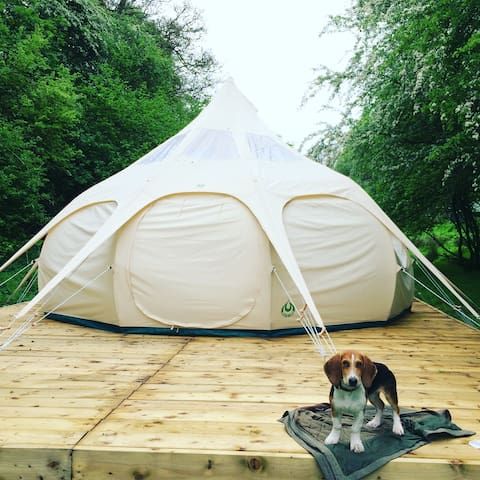 Small Valley Glamping