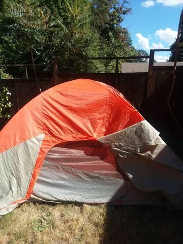 Single person camping tent in private backyard :)