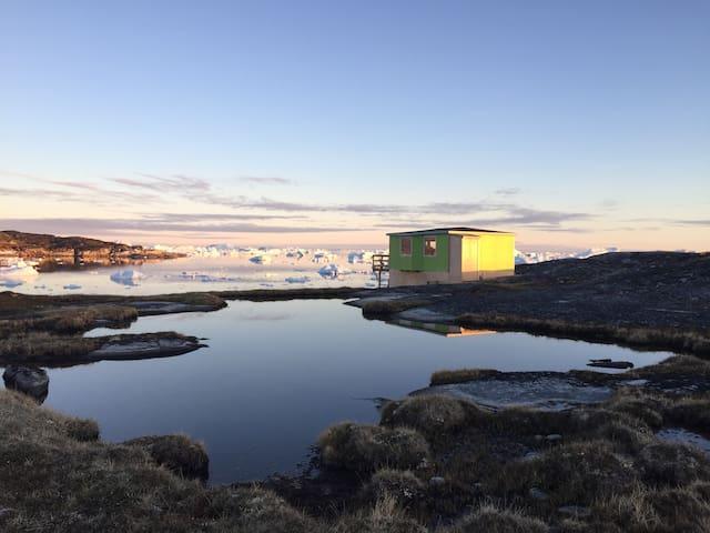 Greenland Wildernes Experience