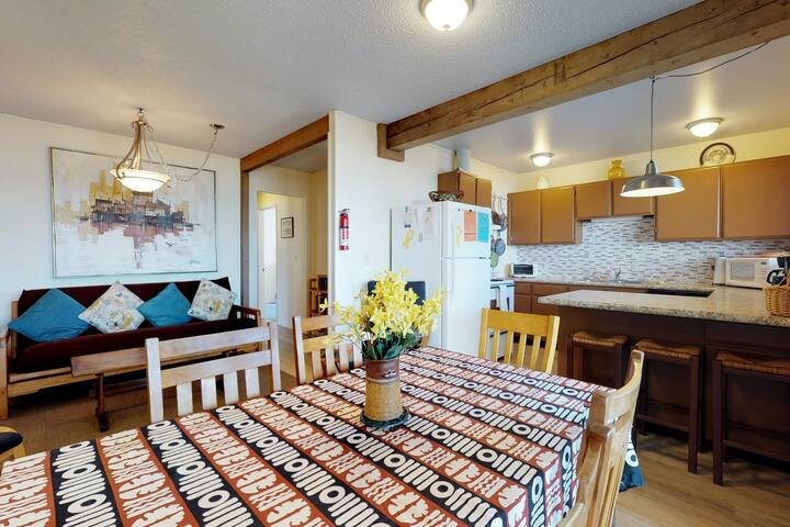 Oceanview, lower-level duplex across the street from the beach - dogs OK!