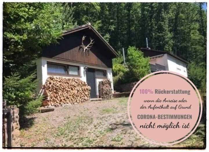 Ferienhaus Holpertal im Pfälzer Wald