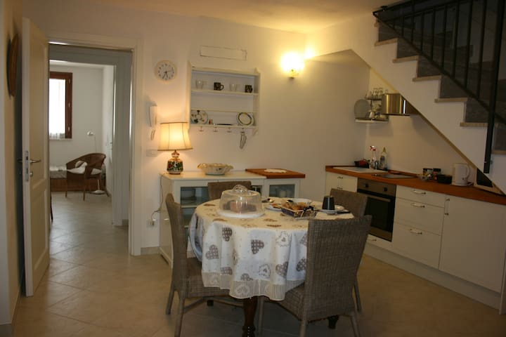 Indipendent apartment  Grosseto City 4 beds