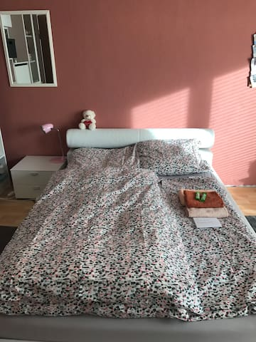 Nice room in city centre + breakfast