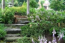 photo shoot area on secluded path in Delaware Park perfect for those family, vacation, honeymoon and wedding photos :)