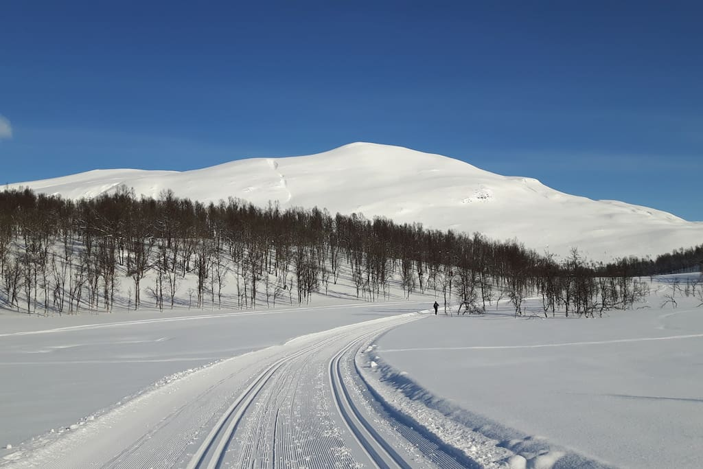 Perfect location for skiing