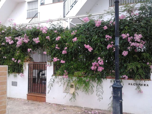 APARTMENT MAZAGÓN - Moguer