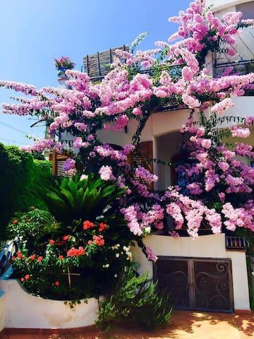 Magnolia House, Sorrento & Amalfi - Massa Lubrense