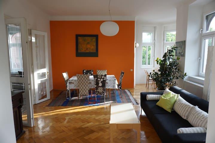 Große Wohnung  Altbau in Nähe zum Zentrum Graz - Graz - Apartmen