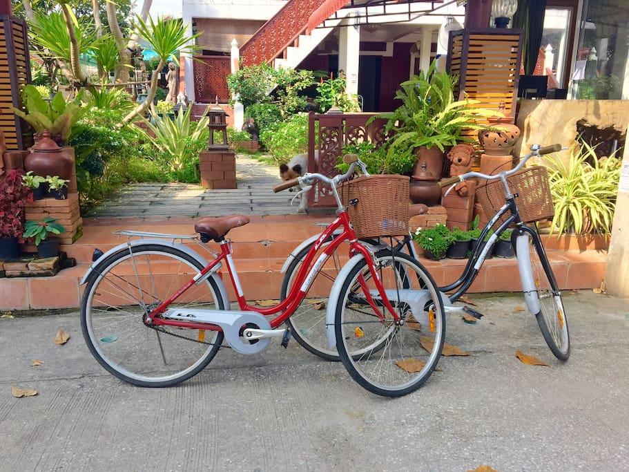 免费自行车啦 !逛古城啦,逛周边啦