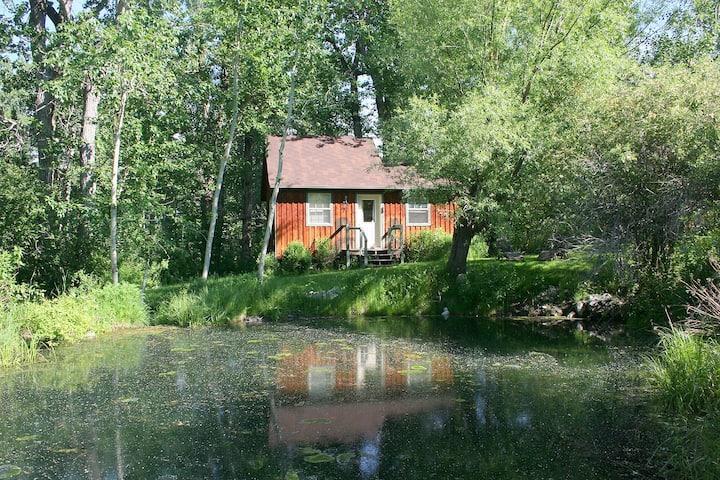 Deep Creek Cabin, Paradise Valley