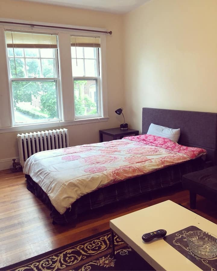 Very spacious room near green T and BC