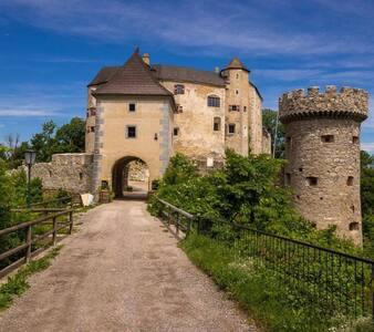 Wohlfühl-Burgzimmer Burg Plankenstein & Frühstück