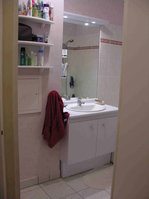 salle de bain de 6m2 avec baignoire