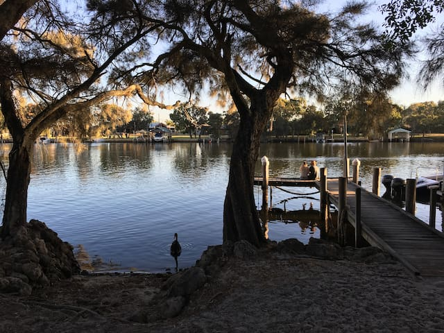 Holiday house on the Murray river with own jetty