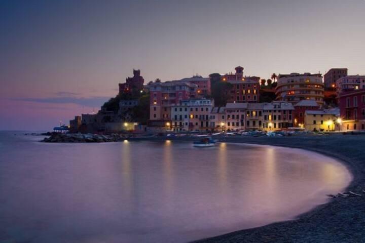 Posidonia casa al mare in città