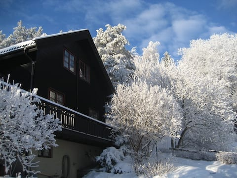 Kroksund only 35 min from oslo, perfect for skiing