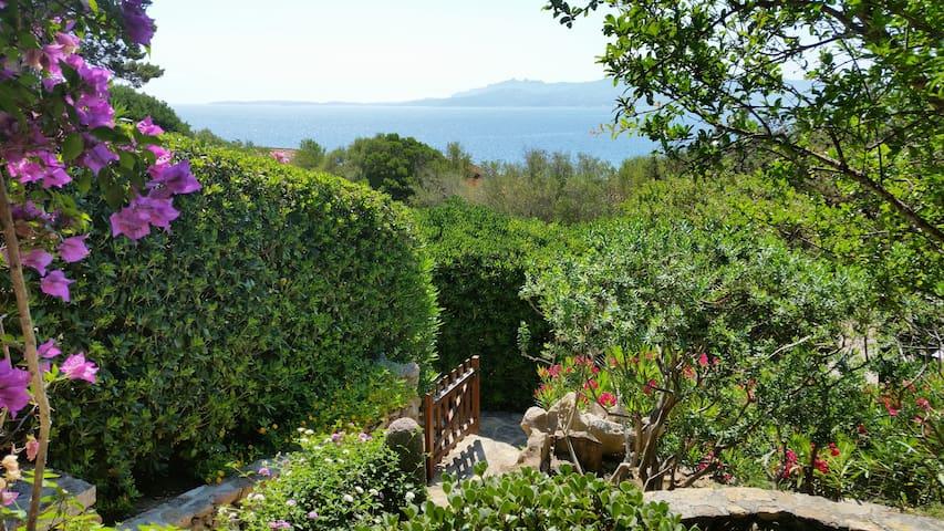 Luxury retreat in Sardinia paradise