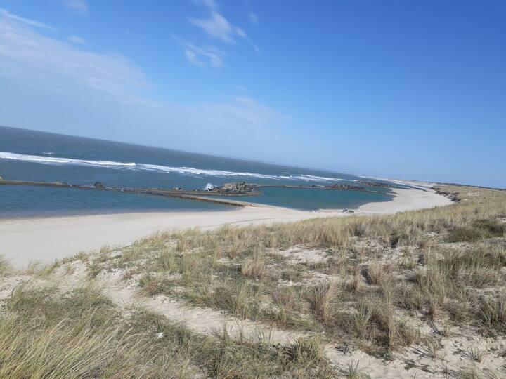 La maison de la plage : nature, forêt et océan