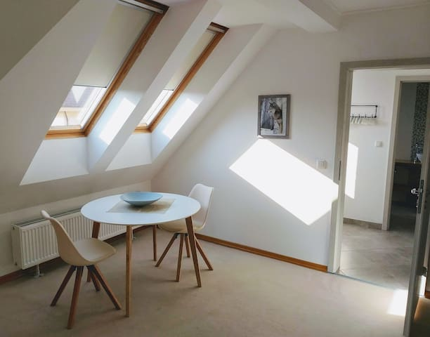 NEW Attic apartment in private villa with garden
