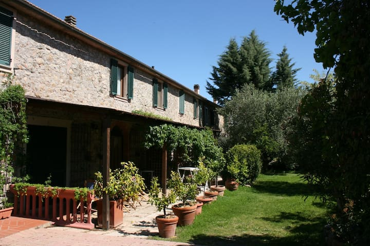 LA MARGHERITA - Campagnatico - Apartment
