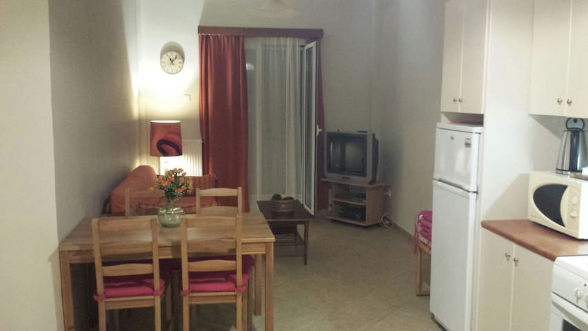Alex studio apartments 300m from the beach - Sounio - Departamento