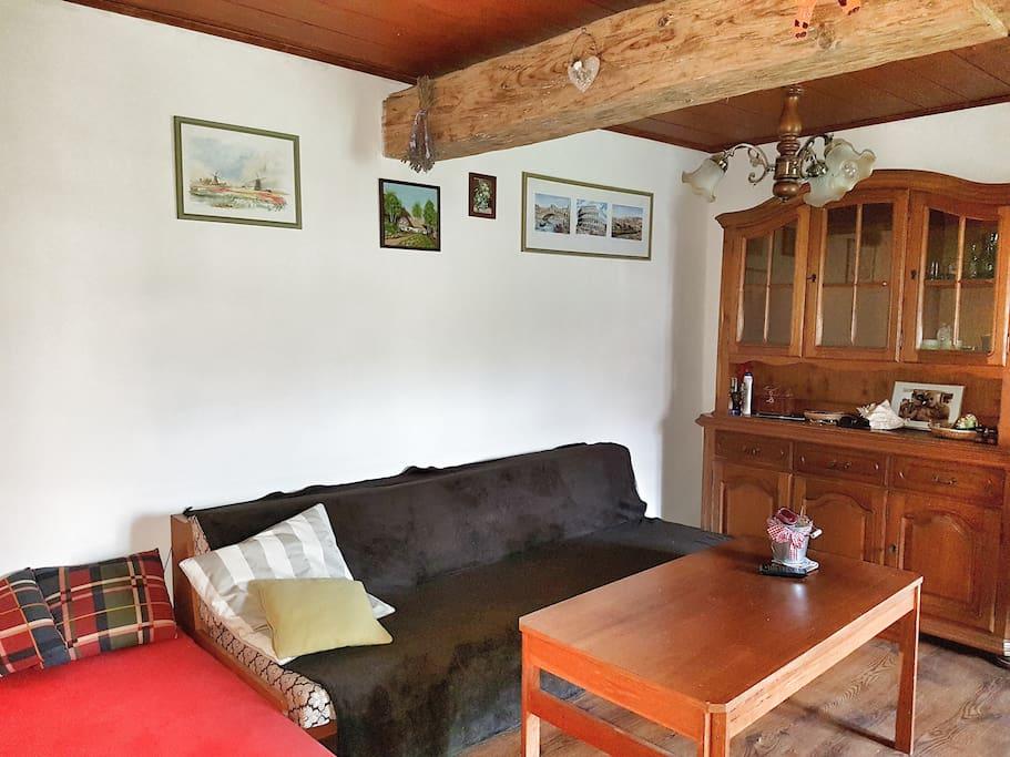 Obývací místnost s rozkládací pohovkou a postelí