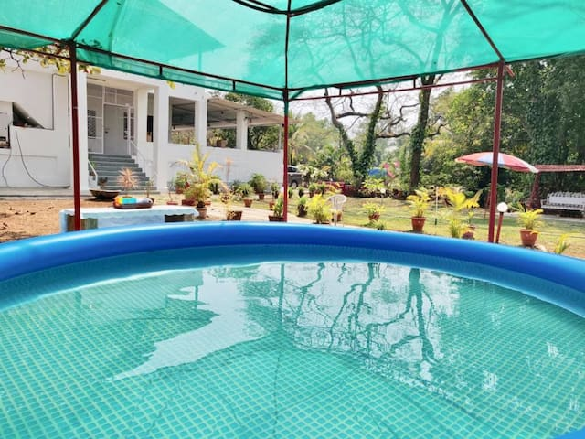 A Beautifully Adorned 3 BHK Bungalow