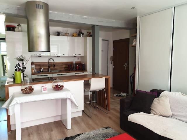 Appartement Ribeauvillé jusqu'à 4 personnes
