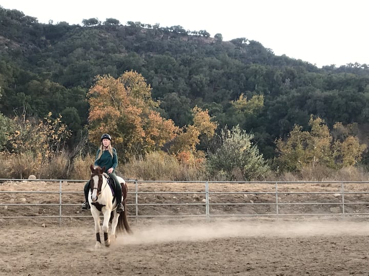 Tranquil Stay on Horse Property  brings harmony