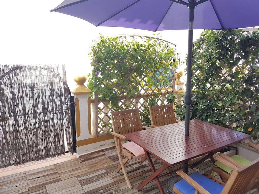 Terraza de entrada con jardín