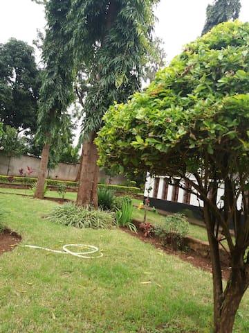 Garden of the house. Nice breeze