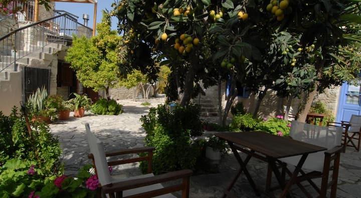 Anna House, Skarinou