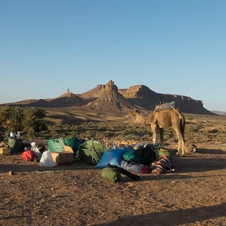 Foum Zguid desert tours and camp