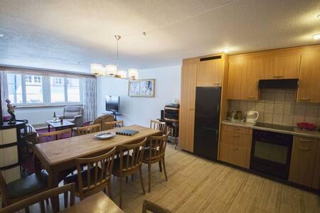 Grosse Wohnung mit top Ausstattung - Schaffhausen - Apartment