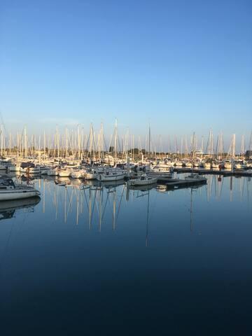 Splendide vue sur le port/Tatihou