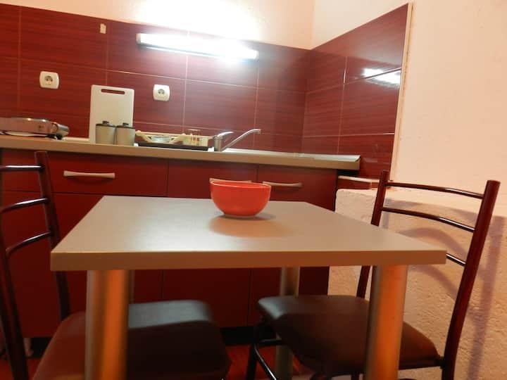Apartment Studio downtown Dudanovi  S2