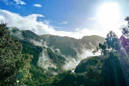 The Topanga Retreat has the best view in Topanga!!