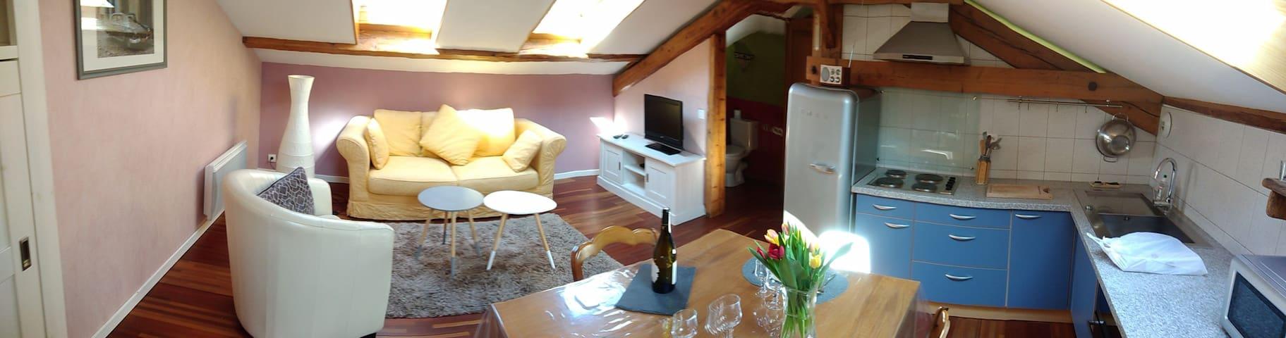 Studio sur les bords du Rhône