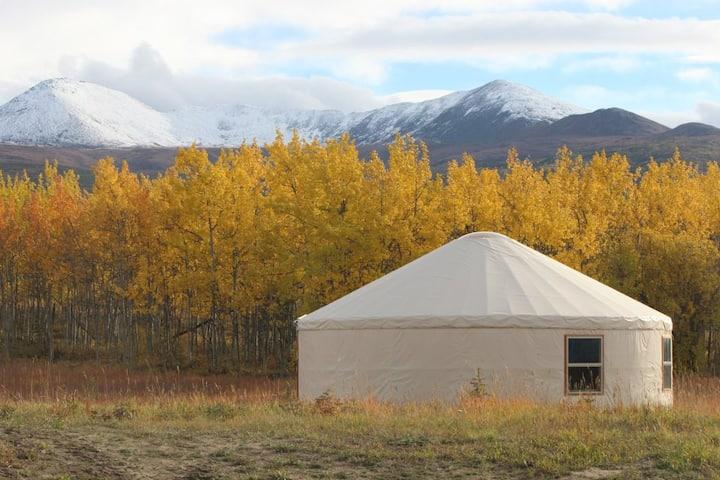 Circle D Yurt