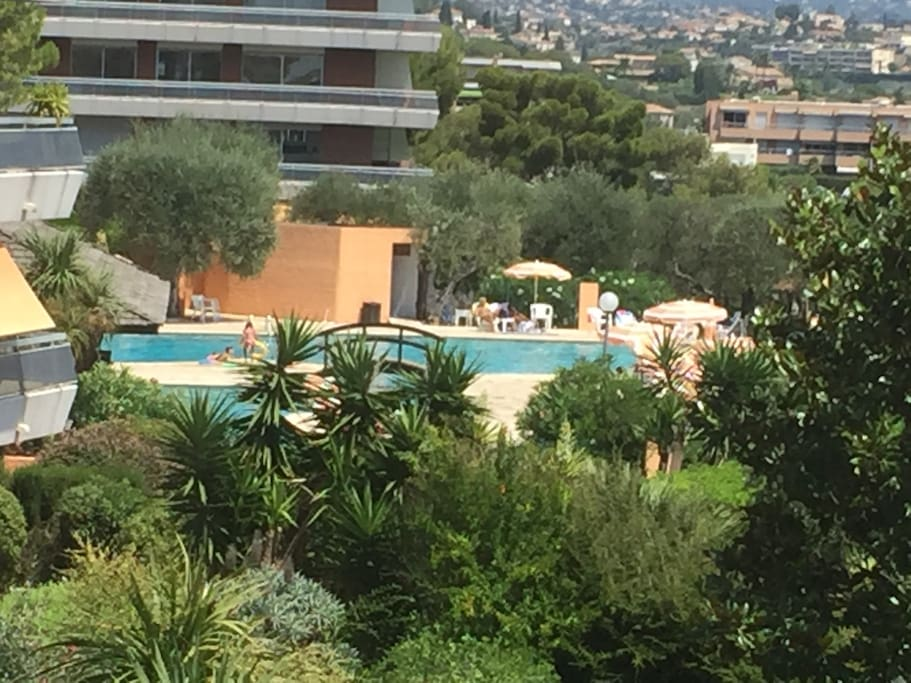Blick vom Balkon auf Pool